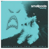 Smallpools - Dreaming (Charli XCX vs. TWIN iDoL Remix)