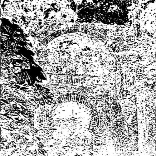 The calling of the Zen Garden
