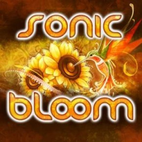 Live at Sonic Bloom 2013