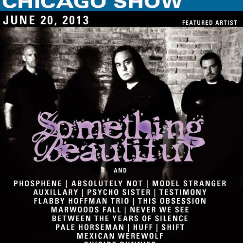 Rock in Chicago Show June 20, 2013
