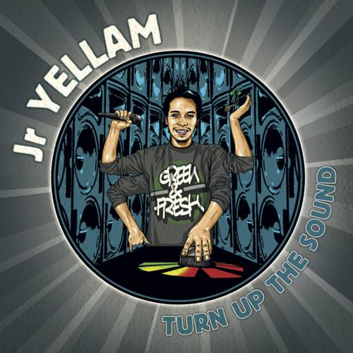 Jr Yellam - Turn Up The Sound [Album Megamix 2013]
