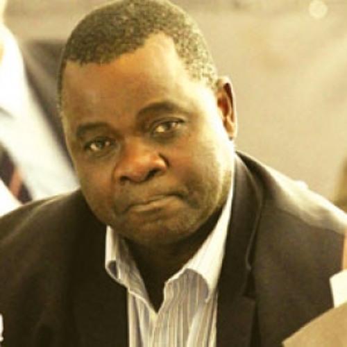 NewsDay Assistant Editor Wisdom Mdzungairi speaks on Guruve MP Chindori Chininga