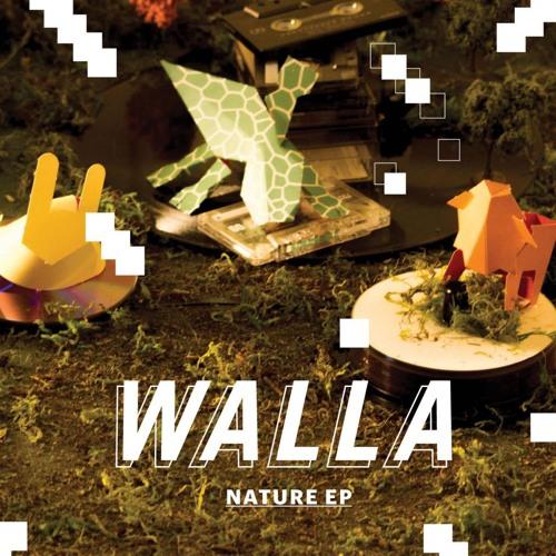 WALLA - Crazy World