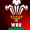 Free Download Welsh Fans In Brisbane Ahead Of Lions Mp3
