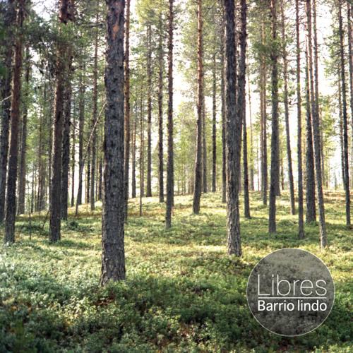 Barrio Lindo - Libres EP