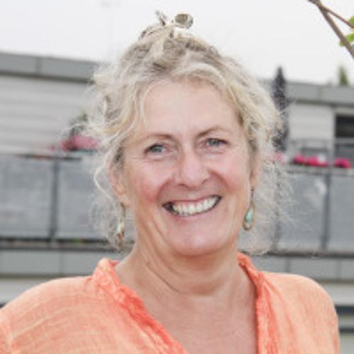 Big Ideas Jane Thomas Cities Audio