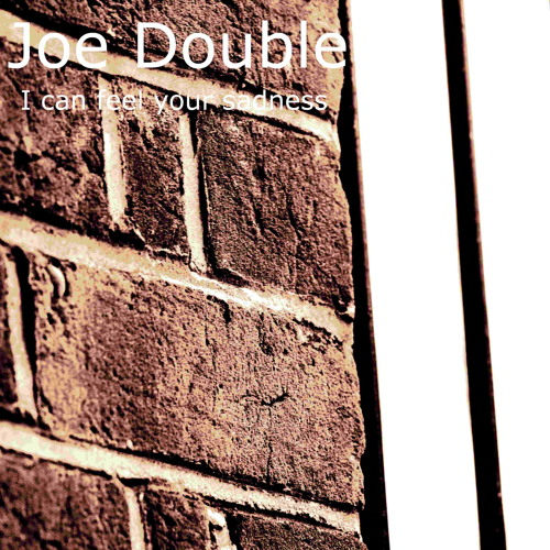 I can feel your sadness-joe double