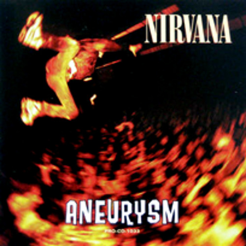 Nirvana- Aneurysm (Electronic Cover) (Chorus)