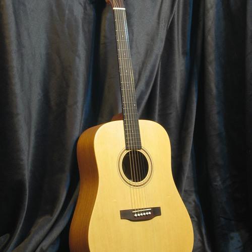 Ayers-DS-acoustic-guitar[www-mp3grabber-net]