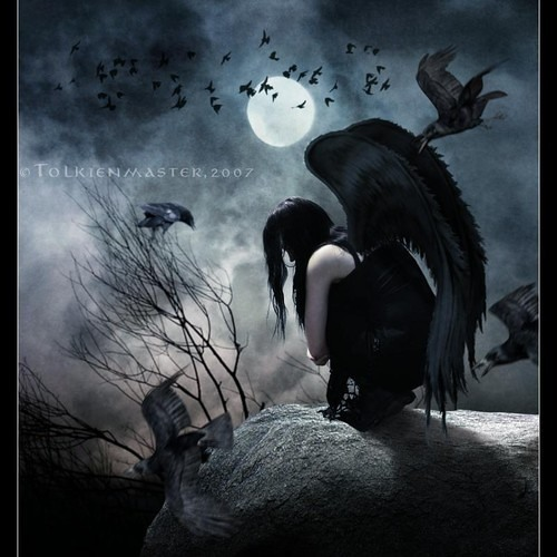 The Corvid's Last Dance (A song in nineteen verses and nine minutes)
