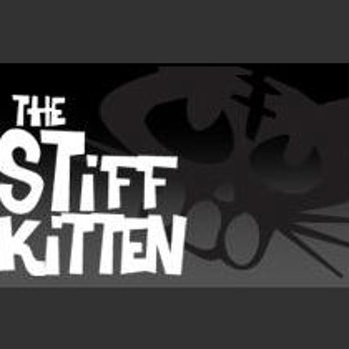 Chris McMahon Stiff kitten Belfast DJ Set - 1st June 2013
