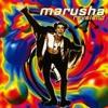 Marusha - Raveland (Andy BSK Remix) FREE DOWNLOAD!!!