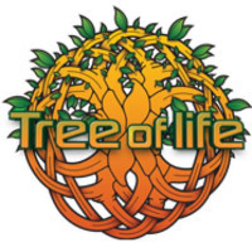 Psysex-Dj:set@Tree of life festival 2013