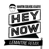 Martin Solveig & The Cataracs - Hey Now feat. Kyle - Lemâitre Remix