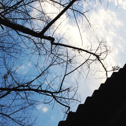 กะทันหัน – รุจ ศุภรุจ / โลว์แฟต / ฟิล์ม บงกช cover by So12kun6