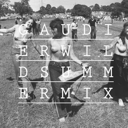 GAUDIER'S WILD SUMMER MIX 2013