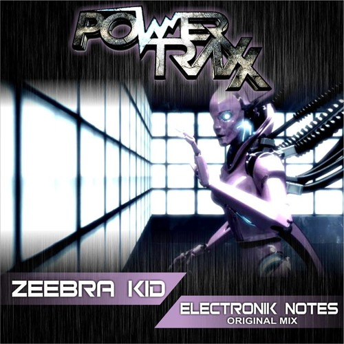 Zeebra Kid - Electronik Notes