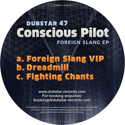 Conscious Pilot - Foreign Slang VIP (Dubstar 2013)