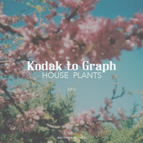 Kodak To Graph - House Plants