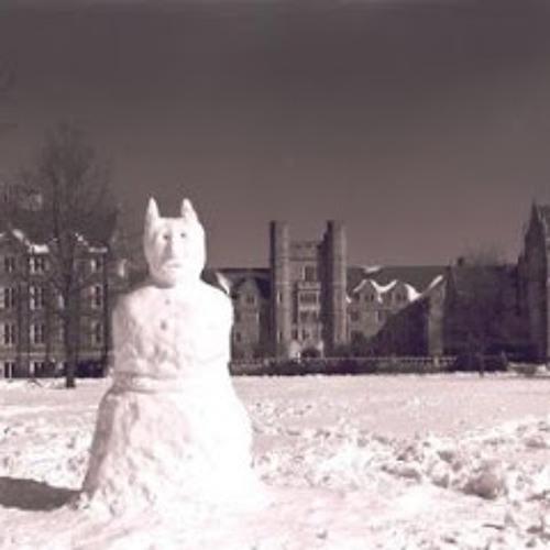 DJ Josh C - Devils Snow FREE DOWNLOAD !