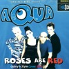 Aqua - Roses Are Red (Gabry'n Style Cover Remix)