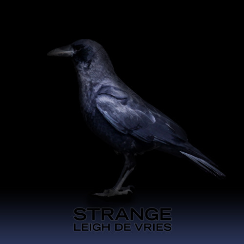 Strange (Jagz Kooner Dub Mix)