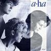 a-ha - Take On Me cover