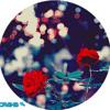 Sky Ferreira - Red Lips (iTunes) (WwW.BaniCrazy.NeT)