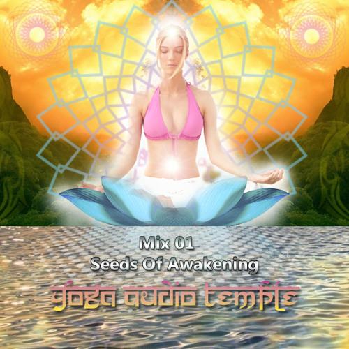 Yoga Music Mix 01 - Seeds Of Awakening