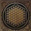 Bring Me the Horizon- Can You Feel My Heart