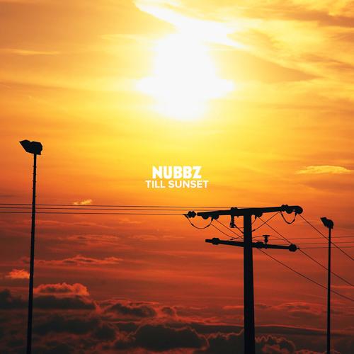 03 Blu - Soul Provider (Nubbz Remix)