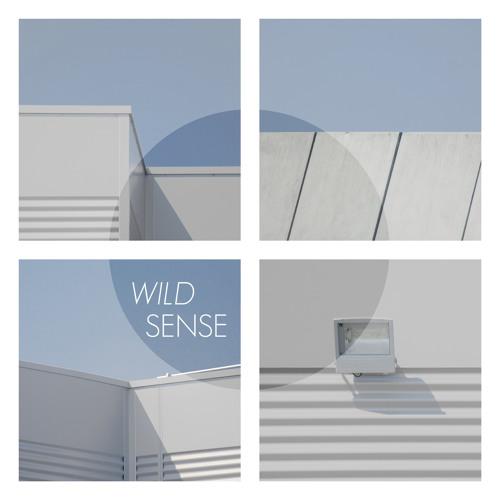 Wild Sense