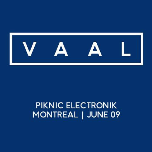 Vaal @ Piknic Electronik 09.06.2013