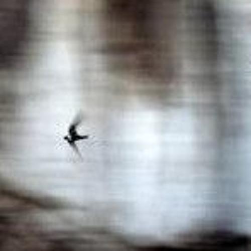 Little Bird Not Mine (ft Juliet Lyons)
