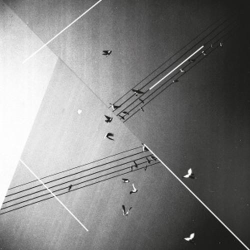 Epavlis Pavlakis - Απλώς μια επιφάνεια|Just a surface (Granny10)