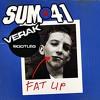 Sum 41 vs. Skrillex, Diplo, Acetronic & Schoolboy - Fat Lip (VERAK Mashup)