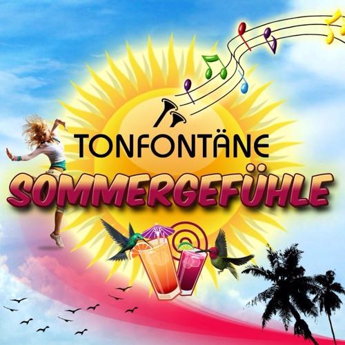 TonfontÑne - SommergefÅhle (Jan Areno remix)