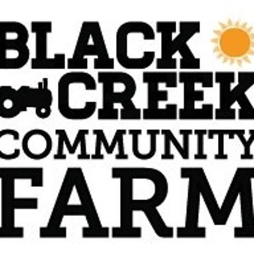 Feature Interview: Gavin Dandy of Black Creek Community Farm