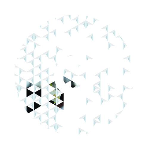 Uncharted Places: Public Transport - Rosenheim (dalot remix)