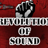 The Sour Berries - Revolution of Sound