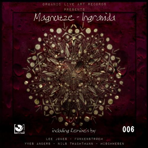 Magnutze - Ingravida (Yves Anders Remix) snippet