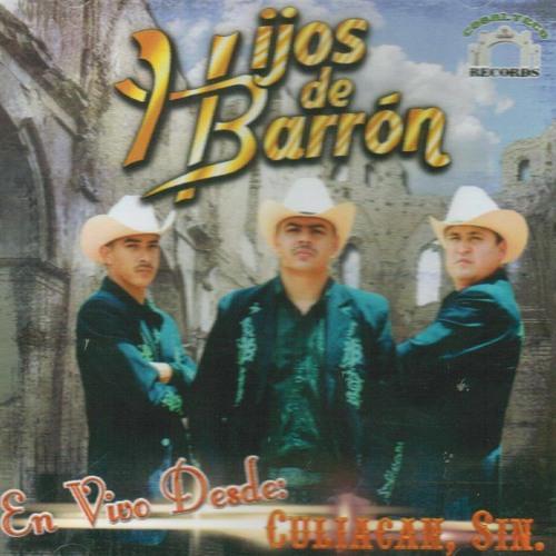 08 Los Hijos Del Barron - Las Ciudades - En Vivo Desde Culiacan Sinaloa - 2013