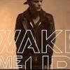 Wake Me Up - Avicii (Extended Mix)