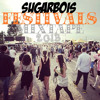SUGARBOIS FESTIVALS MIXTAPE 2013!