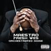 Maestro Fresh Wes - Salute (Ft. Chuck D)