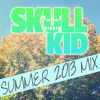 Skull Kid Summer Mix 2013
