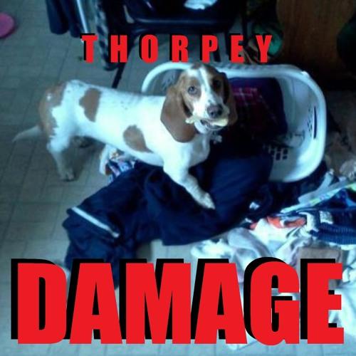 Thorpey - Damage VIP