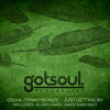 Tommy Bones - Just Getting By (Gotsoul.) mp3