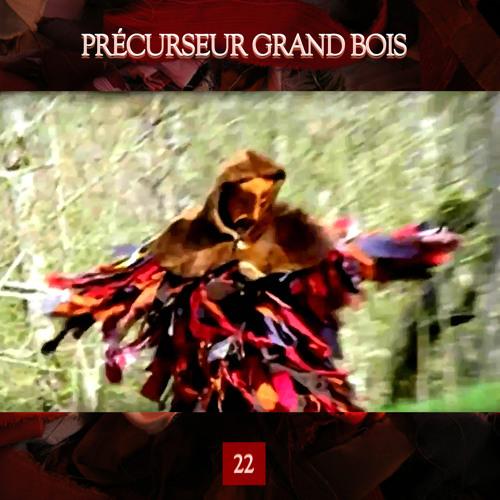 Précurseur Grand Bois - No Rose Without A Thorn