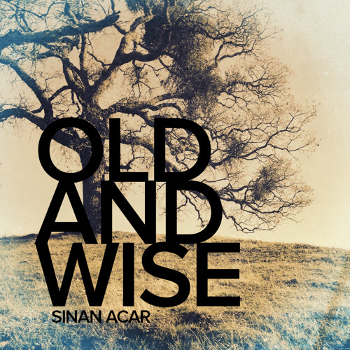 Sinan Acar - Old And Wise